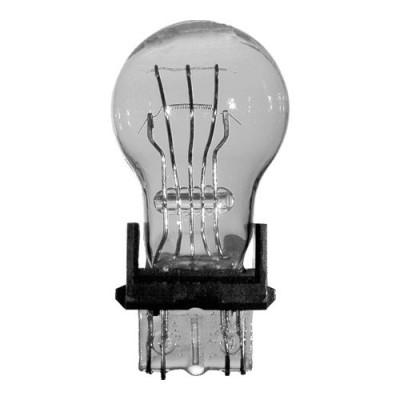 Ampoule # 3157